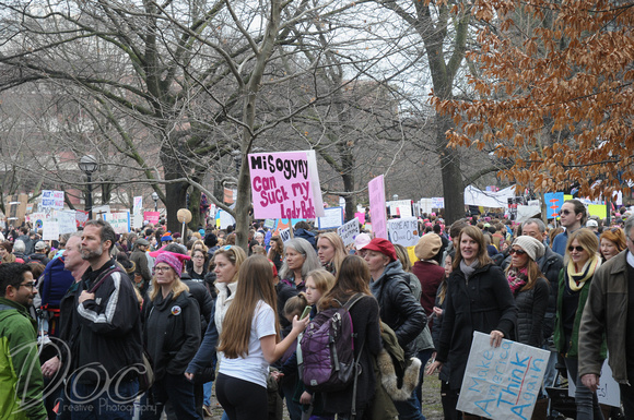 Women's March Ann Arbor, MI